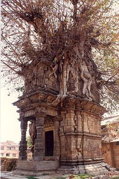 Abandoned In Ruins Crypt Overrun By A Tree, In Katmandu, Nepal Check us out on Fb- Unique Intuitions Abandoned Buildings, Abandoned Mansions, Old Buildings, Abandoned Places, Abandoned Castles, Haunted Places, Spooky Places, Ancient Architecture, Drawing Architecture