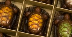 Gourmet Handcrafted Chocolates, Turtles & Truffles | Ghyslain Chocolatier from Dorothy Lane Markets, aren't they perfect?!