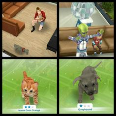 "♢The SimsFreePlay.                                       ""A Puppy Odyssey Quest"" With this quest an Alieen named Osiris visits your sims town and once you complete all the task in the quest, you'll then have puppies and kittens available! There are many more to choose from but these are the free ones! #TheSimsFreeplay #Alien #Puppies  #Kittens #APuppyOdysseyQuest"
