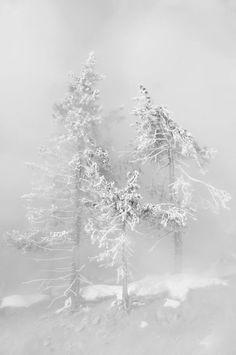 my misty morning