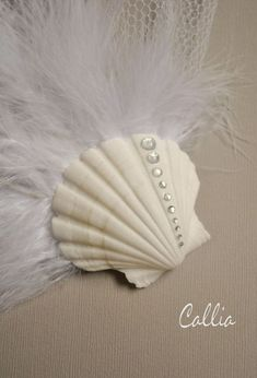 Sea shell hair accessory