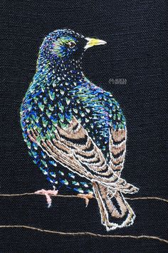 """""""Stare i praktdräkt"""", starling embroidery by Alicia Sivertsson. Swedish Embroidery, Hand Embroidery, Textiles, Starling, Old Pictures, Textile Art, Folk Art, Embellishments, Needlework"""