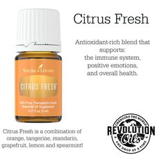 Learn about Citrus Fresh Essential Oil + Great Recipes! | Young Living Essential Oils