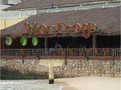 Senor Frog's, Playa del Carmen, Mexico - Restaurants - VirtualTourist