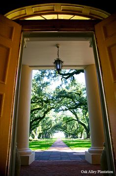 View from the front door.  Have you started planning your next visit, already? :)  Oak Alley Plantation #OakAlley