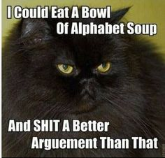 I don't generally post cat pics but this made me blow Girl Scout cookies out of my nose!