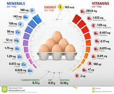 In numerous ways, appropriate nutrition is going to be comparable for males and females, young and old. But there are apparent factors why crucial distinctions will comprise what is smart nutrition for a single person, as opposed to another. Nutrition Education, Health And Nutrition, Health Tips, Egg Nutrition Facts, Smart Nutrition, Nutrition Month, Vitamin A, Eggs Good Or Bad, Bad Eggs