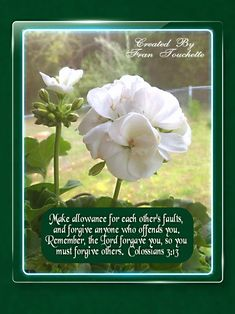 Bible Verse For Today, Bible Verses, Bible Forgiveness, Colossians 3 13, Forgiving Yourself, Lord, Scripture Verses, Bible Scripture Quotes, Bible Scriptures