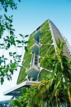 Vertical Gardens CDL's Tree House in Singapore set a new Guinness World Record with the world's largest vertical garden. - CDL's condominium Tree House in Singapore has set a new Guinness World Record as the world's largest vertical garden. Architecture Durable, Art Et Architecture, Futuristic Architecture, Sustainable Architecture, Sustainable Design, Amazing Architecture, Contemporary Architecture, Singapore Architecture, Natural Architecture