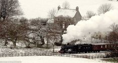 Sunday will see the coldest night of the year in Britain with temperatures set to drop to after a sudden dump of snow covered parts of the north yesterday. Above, the steam locomotive on the North Yorkshire Moors Raiwlay cuts through the snow Cold Night, Steam Locomotive, Train Tracks, North Yorkshire, Love Photos, Beautiful Places To Visit, Days Out, Great Britain, Brighton