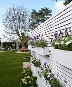 Stacked Window Boxes on a White Fence