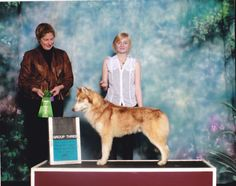 Siberian Husky male, Token, taking Best of Breed and Group 3.