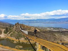 A visit to Kelowna suspension bridges on a perfect sunny Okanagan spring day! Suspension Bridge, Spring Day, Bridges, Sunny Days, Attraction, Tourism, Things To Do, Road Trip, Places