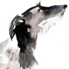 ink - sumi-e Scottish deerhound Sarah_Maycock_deerhound2