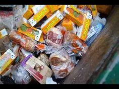 rob greenfield s guide to dumpster diving dumpster diving   ganism what grocery stores throw away