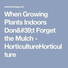 When Growing Plants Indoors Don't Forget the Mulch - HorticultureHorticulture