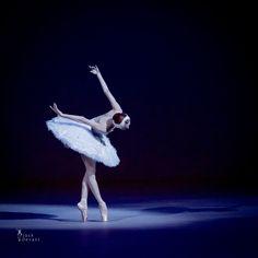 "Ulyana Lopatkina Ульяна Лопаткина (Mariinsky Ballet), ""The Dying Swan"" choreography by Mikhail Fokin, Bolshoi Theatre, 2015 Benois de la Dance (May 27)"