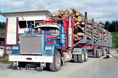 Kiwi, New Zealand, Commercial, Trucks, Truck