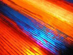 Red and Yellow and Orange and Blue by Cyron, via Flickr