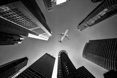 An poster sized print, approx (other products available) - Tall city buildings and a plane flying overhead, Black and White tone - Image supplied by Fine Art Storehouse - Poster printed in Australia Airplane Flying, Airplane View, Voyager Loin, Cheap Flights, Travel Abroad, Travel Tips, Dc Travel, Family Travel, Travel Photos