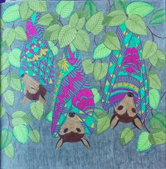 Tropical World By Millie Marotta Colored Tammy L Beard 05 31