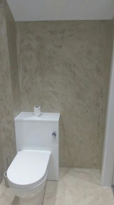 An ensuite bathroom coated in microcement. From this angle you can really see the depth of colour in this application. Domain Hosting, Concrete, Toilet, Flooring, Colour, Bathroom, Travertine, Color, Washroom