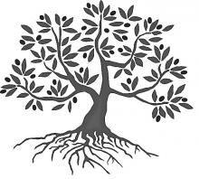 olive tree.jpg (220×198)