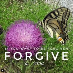 xaoa/'14'For if you forgive men their trespasses,your heavenly  Father will also forgive you.15But if you do not forgive men their trespasses neither will your Father forgive your trespasses.'MATTHEW 6:14-15