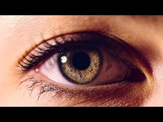 Eyes: The Windows to Your Health - http://trolleytrends.com/health-fitness/eyes-the-windows-to-your-health