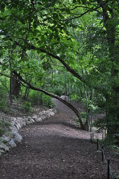 Botanical Gardens in Ann Arbor