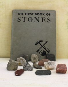 Vintage Rock Collection and Educational Rock Book