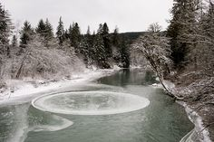 A Massive Naturally Occurring Ice Circle Appears Briefly in a Washington River