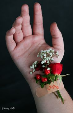 Hand Photo, Open Hands, Cute Wallpaper For Phone, Cute Wallpapers, Joker, Portraits, Quotes, Flowers, Inspiration