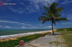 Coqueiro - Santa Cruz Cabrália - BA - Brasil