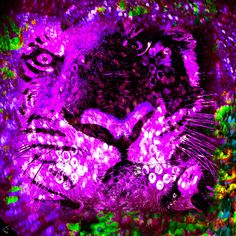 Rajah print in purple  This tiger is watching you. The beautiful jewels that surround him soften his arresting stare. A kaleidoscopic border shifts the focus from his stare and gives a balance between intensity and gentle beauty.
