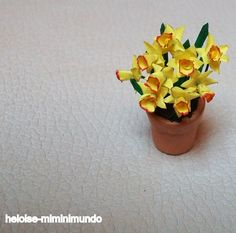 how to: daffodils