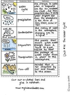The Water Cycle Foldable plus Vocabulary Sheets, FREE by S Fourth Grade Science, Middle School Science, Elementary Science, Science Classroom, Science Education, Teaching Science, Science Notes, Water Cycle Activities, Science Activities