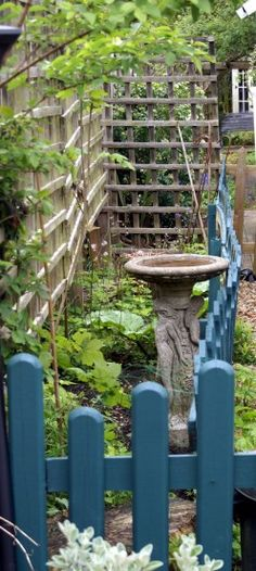 Container Gardening - Growing Your Own Fruit, Vegetables and Flowers in Small Spaces