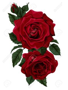 Beautiful bouquet of red roses isolated on white. Vector - Beautiful bouquet of red ro Rose Tattoo Thigh, Rose Flower Tattoos, Red Rose Tattoos, Up Tattoos, Punk Tattoo, Tattos, Rose Images, Creative Tattoos, Rose Bouquet