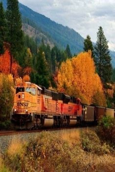 Train in the Autumn Colors (77 pieces)