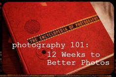Maybe Matilda: Photography 101 :: Your Suggestions!