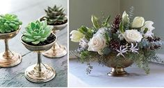 The Bridal Roundtable: So Succulent!
