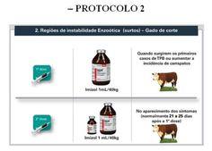 QUIMIOPROFILAXIA: Uma estratégia para o controle da Tristeza Parasitária Bovina - Anuncie - Novidades dos Parceiros - MilkPoint