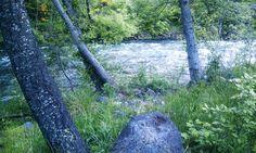 Sacramento River at Tauhindali Park in Dunsmuir, California