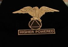 Alcoholics Anonymous Higher Powered Eagle Vest Pin NA Narcotics Al Anon | eBay