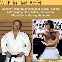 Vladimir Putin earns a ninth degree black belt - WTF fun facts