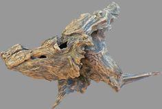 boar, driftwood, yann viau, driftwood fisher
