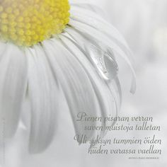 Posts about Runot/Lainatut sanat on Marlan jutut Finnish Words, Tattoo Ideas, Thoughts, Texture, Feelings, Nice, Google, Quotes, Tomy
