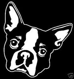 Airedale Terrier. American Pit Bull Terrier. American Staffordshire Terrier. Afghan Hound. Australian Terrier. Bedlington Terrier. Basset Hound. Black Russian Terrier. | eBay!