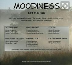 Calm... mood anxiety essential oils